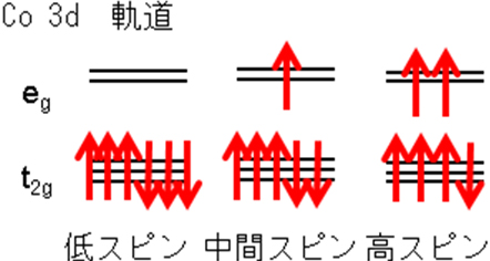 強相関絶縁体における歪み誘起磁...