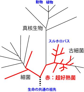 image_01.png
