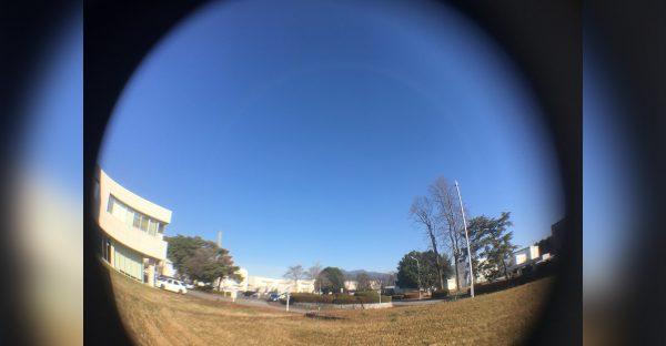 冬空のつくばキャンパス。正面後方は筑波山(撮影:引野)