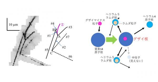 「グザイ核」の内部構造、ついに観測成功