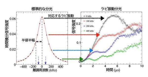 逆転の発想「ラビ振動分光」でミュオニウム原子を精密に測定