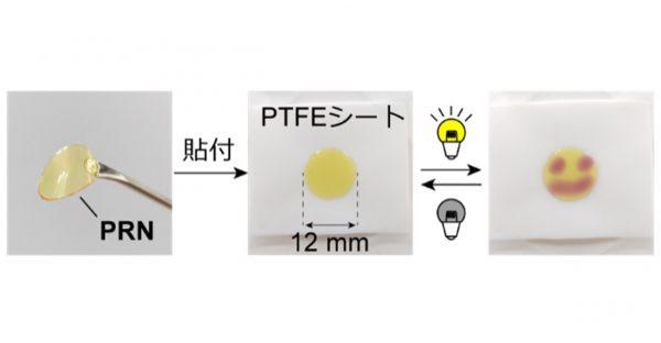遠隔的に剥離・解体可能な光応答性エラストマーの開発